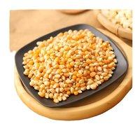 Dried Yellow Corn Seed