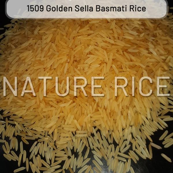 1509 Golden Sella (Parboiled) Basmati Rice