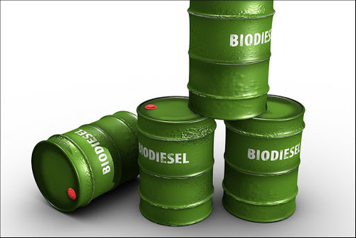 Natural Biodiesel
