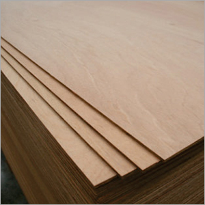 BWP Ply Wood