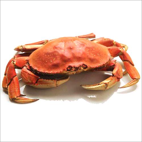 Cross Crab ( Lal Karachalo)