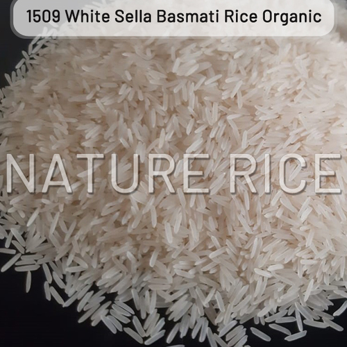 Organic 1509 White Sella Basmati Rice
