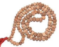 11 Mukhi rudraksha mala