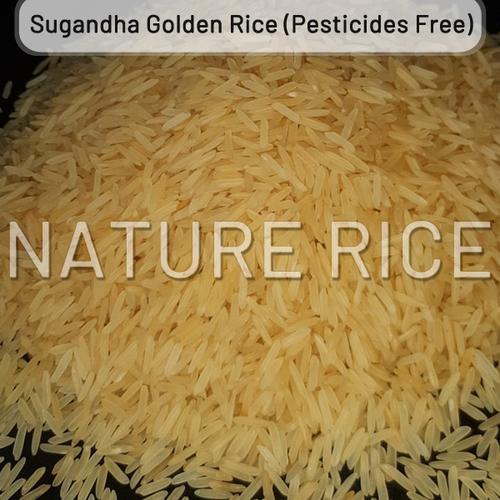 Organic Sugandha Golden Sella (Parboiled) Rice