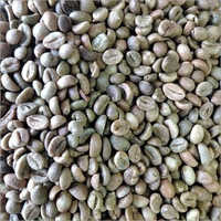 Green Arabical Coffee Beans
