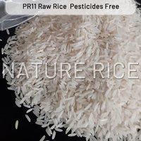 Organic PR11 White Raw Rice