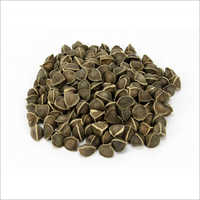 Moringa Seeds (Wings/Wingless)