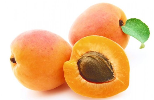 Apricot Pulp