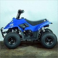 Blue-80CC Junior ATV Bike