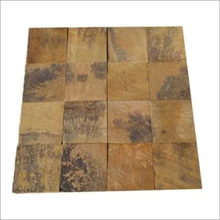 Fossils Sandstone
