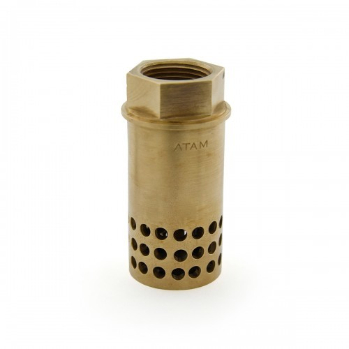 Bronze Foot Valve (Hole Type), Pn 20