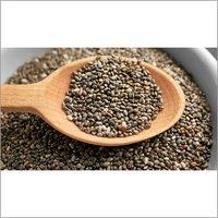 Black Cumin Seed Oil (Nigella Sativa)
