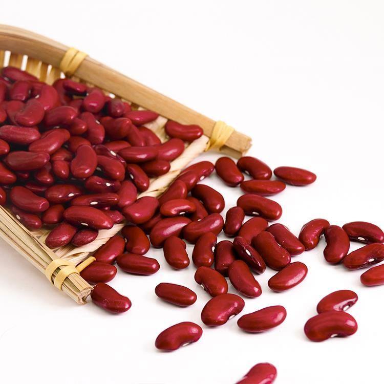 Red Kidney Bean