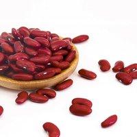 Red Kidney Beans | Black Kidney Beans