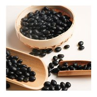 Black Beans For Sale