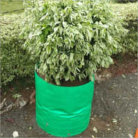 Green Plant Grow Bag