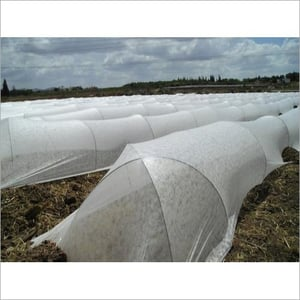 Commercial Low Tunnel Film