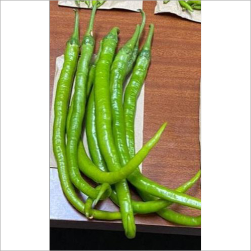 Green Fit Hybrid Green Chili Seeds