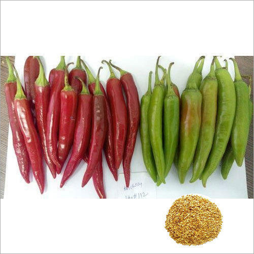 2130 Red Hybrid Chilli Seeds
