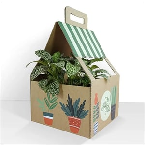 Printing Gift Packaging Box