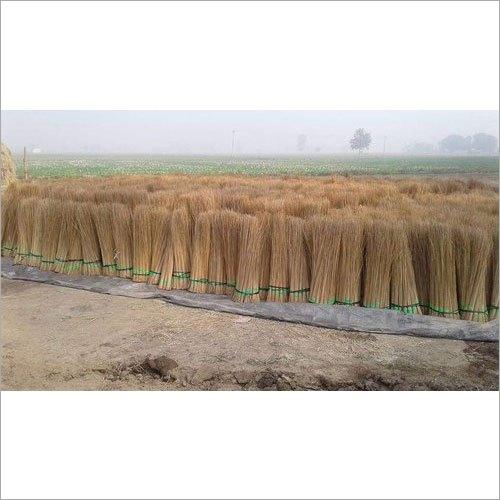 42 Inch Coconut Stick Broom