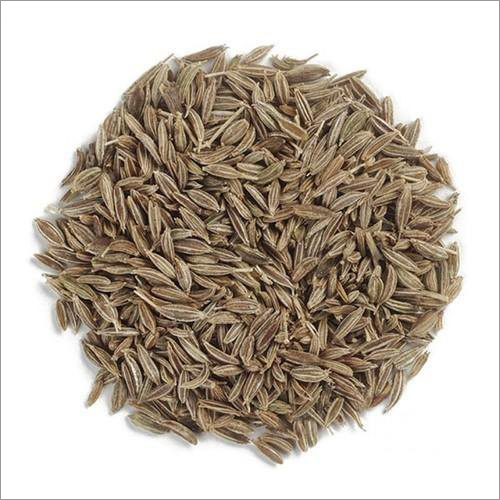 Singapore Quality 970 Cumin Seeds