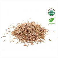 USDA Certified Organic Cumin Seeds