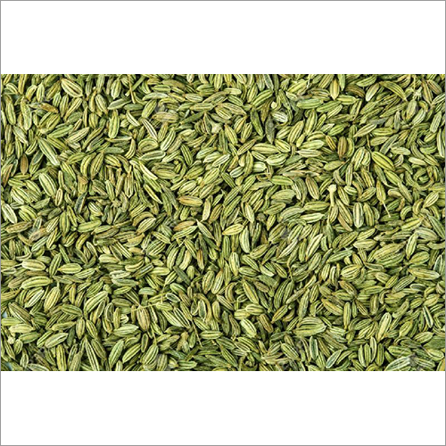 Green Park Fennel Seeds