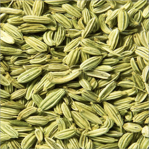 Singapore Quality Fennel Seeds