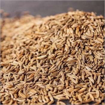 Cummin Seeds