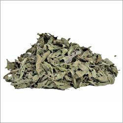 Basil Dry Leaves