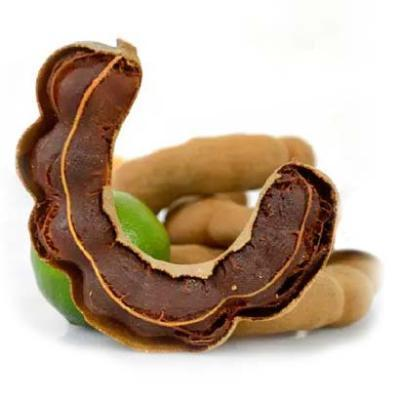 High Quality Tamarind With Seed