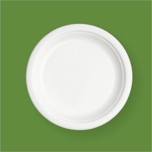 10 Inch Round Bagasse Plate