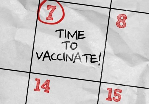 Immunization reminder system