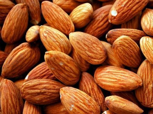 High Quality Raw Cashew Nut