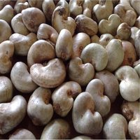 100% Raw Natural Cashew Nuts