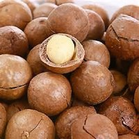 Macadamia Nuts In Shell