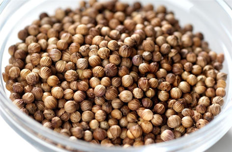 Best Quality of Coriander Seeds