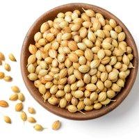 High Quality Coriander Seeds