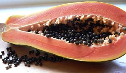 Malaysia Tropical Papaya Seeds For Sale