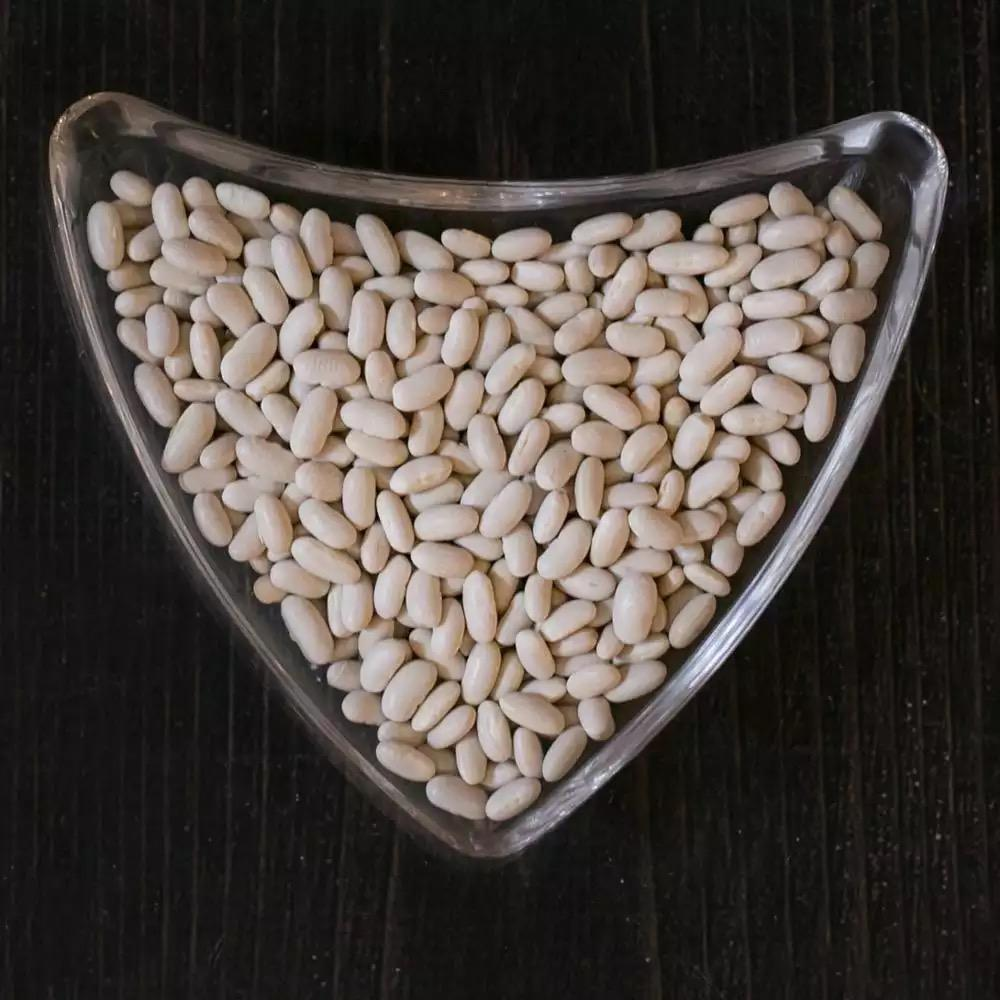 White Kidney Bean Navy Beans At Affordable Price.