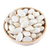 Premium Grade White Kidney Beans