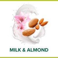 Palmolive Naturals Almond & Milk Shower Gel 250ml