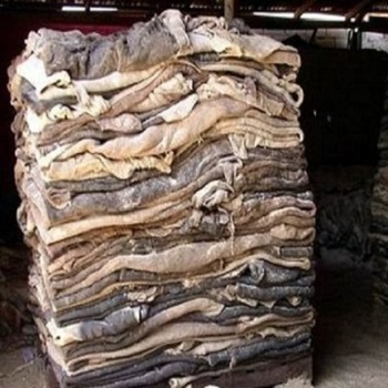 Wet/dry Blue Salted Cow Skin,wet/dry Salted Donkey Hides Available At Cheap Price