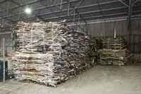 Top Quality Wet Salted & Dry Salted Donkey Hides & Cow Hides Cattle Hides Animal Skin Goat Leather