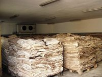 High Quality Dry And Wet Salted Donkey / Cow/goat Skin / Cow Hides