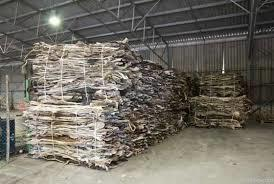 Salted & Dry Salted Donkey Hides And Cow Hides, Cattle Hides, Animal Skin, Goats, Horses