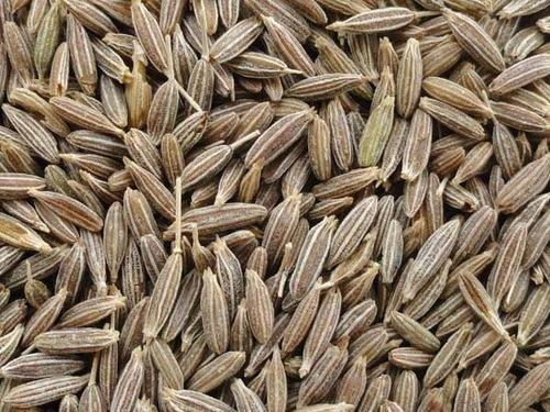 Pure Black Cumin Seed