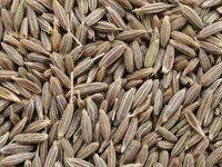 ISO Certified Purity Of 98% Cumin Seeds Best Exporter