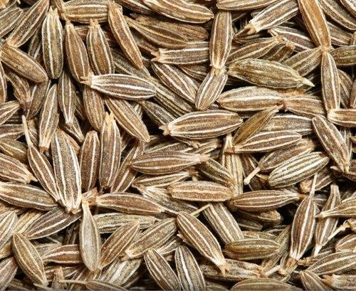 Yellowish Brown Natural Cumin Seeds Exporter